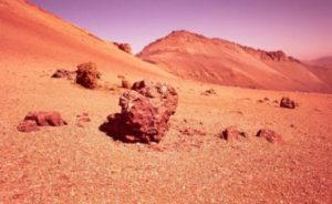 Is the Red Planet capable of sustaining plant growth? (Credits: NASA)