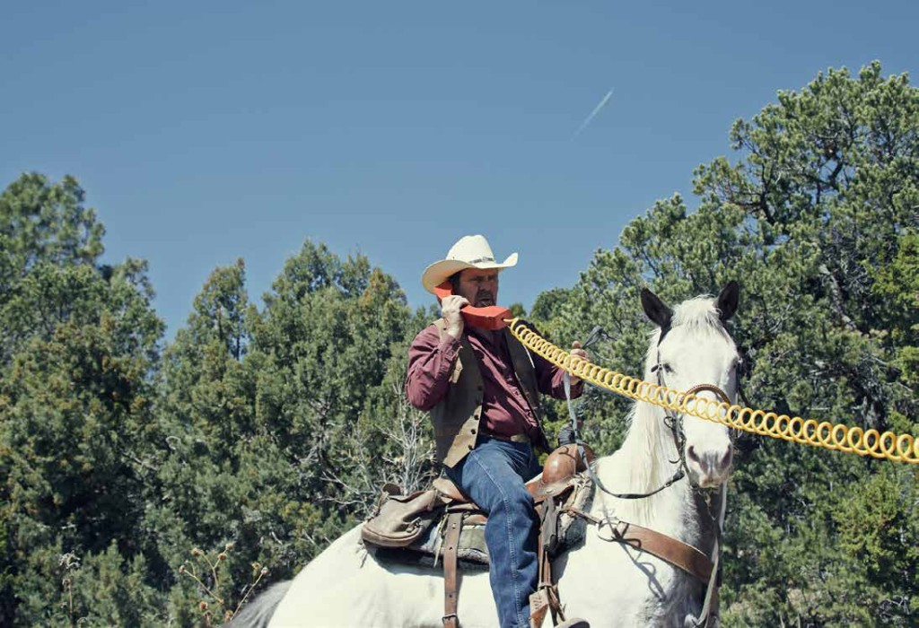 Cowboy on red phone from Disaster Playground