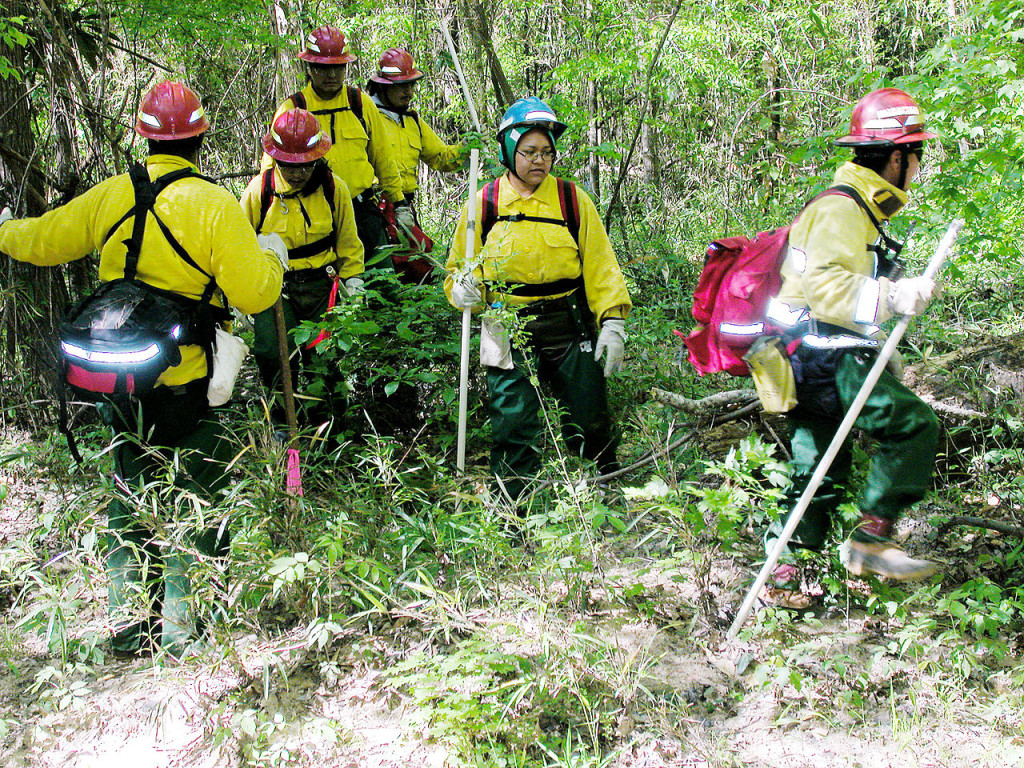 US Forest Service searching for Columbia debris near the Hemphill, Texas site. Credit: Wikimedia